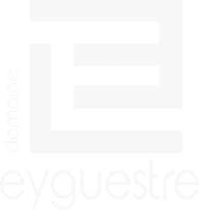 Logo Eyguestre white